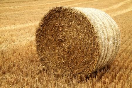 Haystack close up