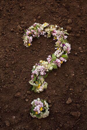 Environmental concept flower question mark