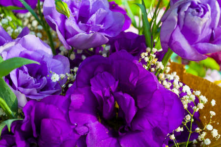 tulips and roses in weird blue color in cheerful bouquet Stock Photo