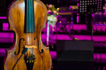 close up photo of vintage violin with flowers in concert hall