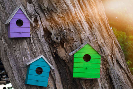 Lots of colorful wooden birdhouses on a tree against summer flare
