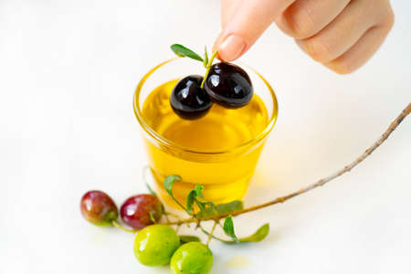 Olive oil and black olive branch isolated on white background
