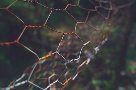 The close up of brown wire fence (barricade) which is hardly rusted in blurred background (meadow).