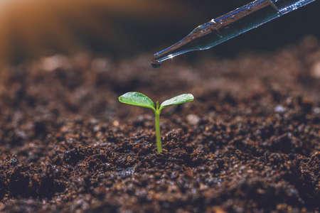 scientific irrigation method and agriculture concept