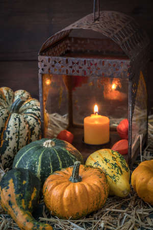 Variation of pumpkins and decorative gourds with a rusty lantern on straw. Vertical stock photo. 免版税图像