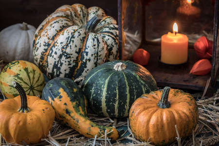 Variation of pumpkins and decorative gourds with a rusty lantern on straw