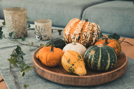 Various edible and decorative pumpkins on a round wooden tray as decoration on an oak living room table