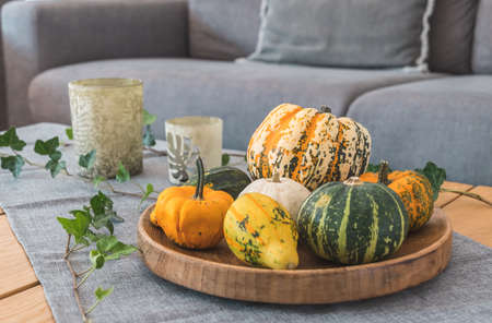 Various edible and decorative pumpkins on a round wooden tray as decoration on a wooden living room table with sofa in the background