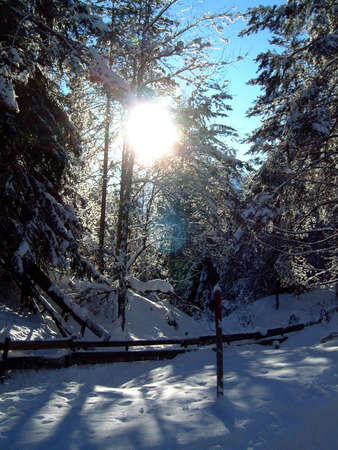 tyrol: winter in tyrol