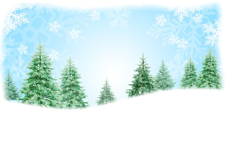 Christmas nature background photo