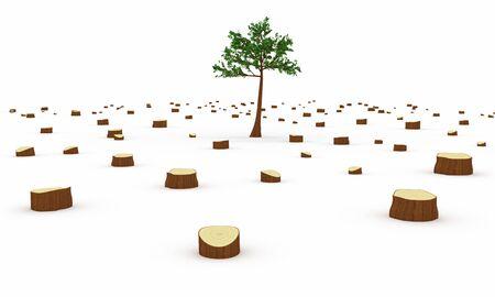 deforestacion: La deforestación concepto Foto de archivo
