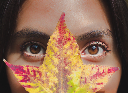 Ojos latinos, um traves de uma casa do bosque na Cidade do México.