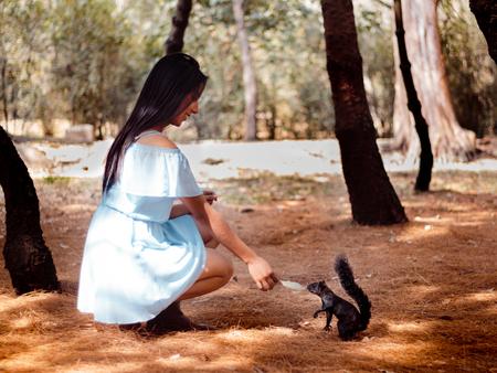 Alimentar a ardilla en medio del bosque es algo que cualquier persona disfruta. Unica chica alimenta una ardilla en medio de los viveros de Coyoacán en la Ciudad de Mexico. Foto de archivo - 93520593
