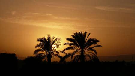 luxor: Luxor Sunset