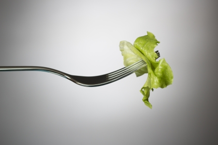 One lettuce leaf on a horizontal fork Stock Photo