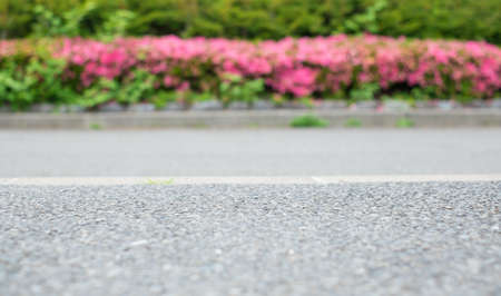 railway points: The road beside with pink flower, selective focus on center of road Stock Photo
