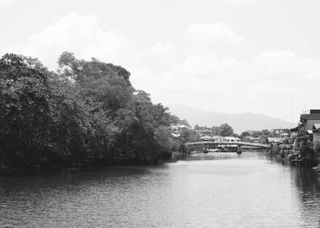 beside: trees beside the river, black and white filter