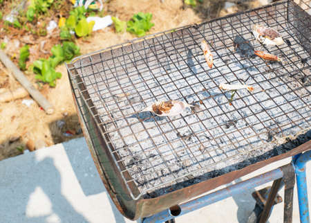 grate: grill grate on the beach