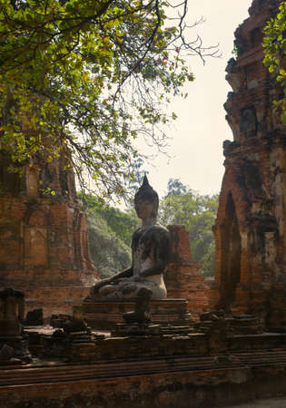 buddha statues in historical park