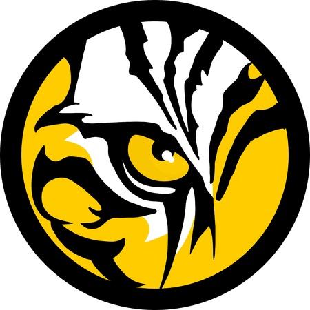 tigres: Ojo de Tigre Vectores