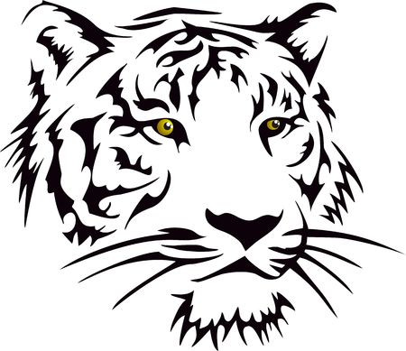 silvestres: Cabeza Del Tigre Vectores