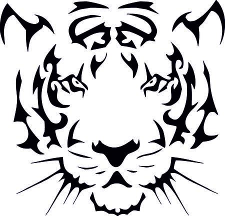 tawny: Tiger Head