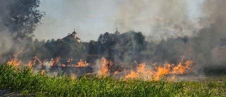 The grass burns in a meadow. Ecological catastrophy. Fire and smoke destroy all life.