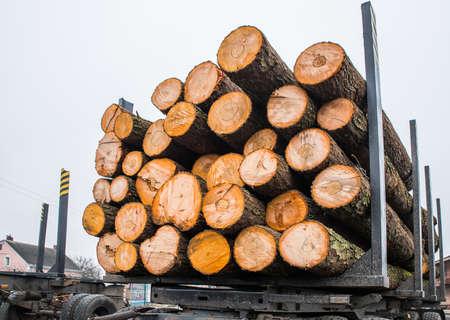 Wooden logs on a truck trailer.