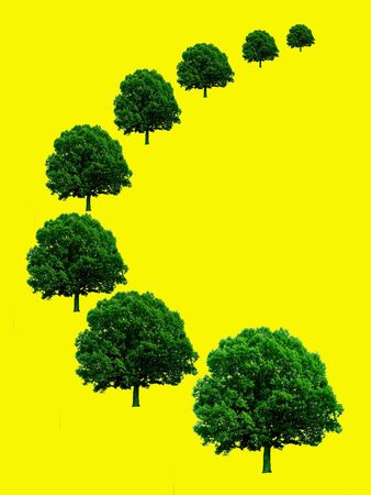 Green trees in perspective on yellow background