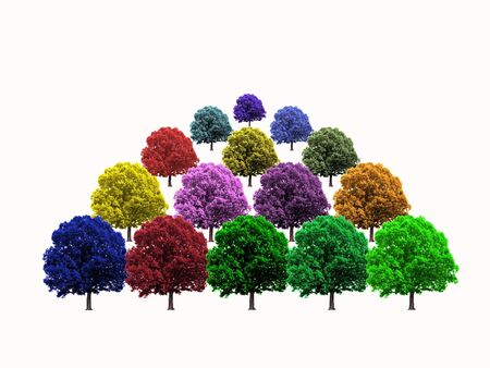 Rows of colorful trees on white background