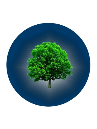 Green tree inside of a blue circle in a way of logo
