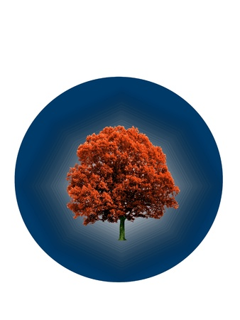 Red tree inside of a blue circle in a way of logo