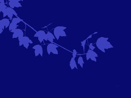 Silhouette of a blue branch, on a darker background. Stock Photo