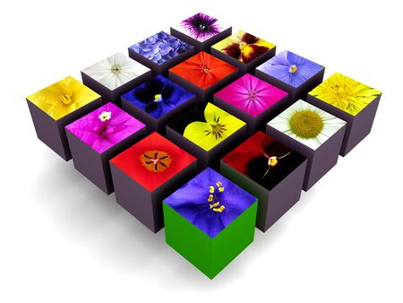 Colorful flowers stamped on the surfaces of blocks arranged in a bigger block, on white background. Stock Photo