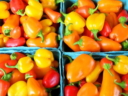 Colorful small peppers inside of four boxes, next each other.
