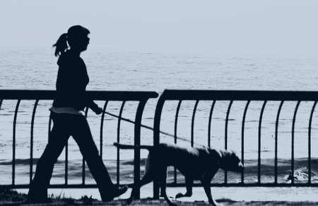 silhouette of girl walking dog photo
