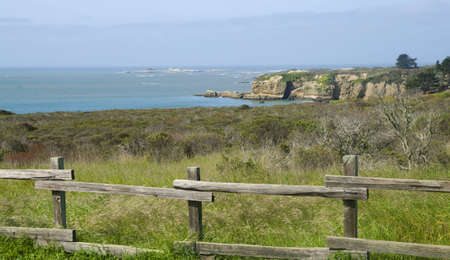 breeding ground: Ano Nuevo Beach cliff Elephant Seal breeding ground