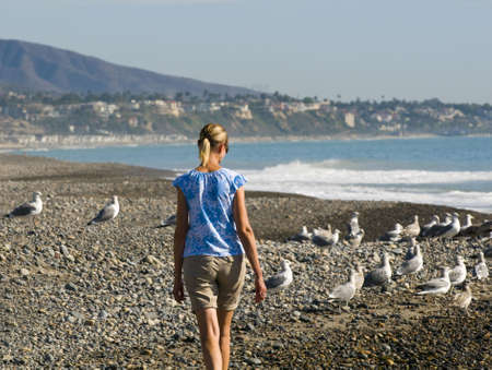 woman walking on beach with seagulls photo