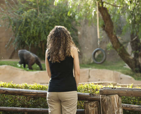 darwinism: Young woman looking at ape in distance