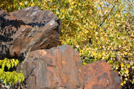 inanimate: The contrast of animate and inanimate nature, the large stones of iron ore on the background of yellowed tree