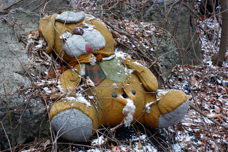 sorrowfully: Forgotten and abandoned in the woods toy