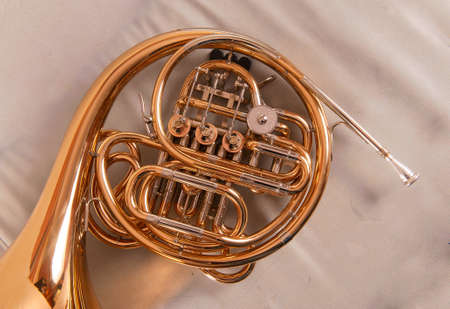 resonate: One french horn on grey background Stock Photo