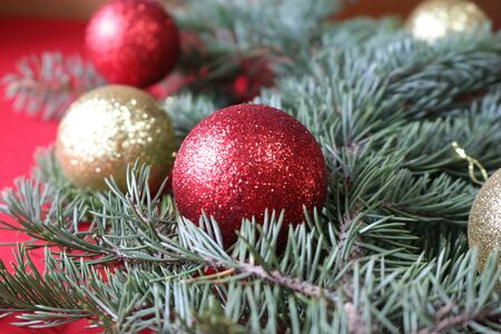 Green fir branch with red and gold balls on a red background for a Christmas card.