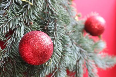 Green fir branch with red balls on a red background for a Christmas card.