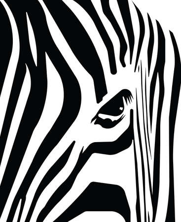 rnanimal: Abstract blank and white stripes depicting a zebra  Illustration
