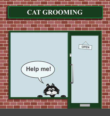 Reluctant feline not happy to be at the cat grooming establishment Stock Vector - 8599858