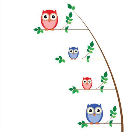 owlet: �rbol de familia de b�ho aislada sobre fondo blanco Vectores