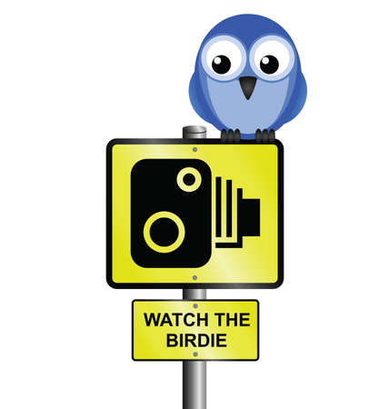 ornithology: Speed camera sign with photographic saying watch the birdie