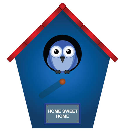 nesting box: Bird looking out from his bird house Illustration