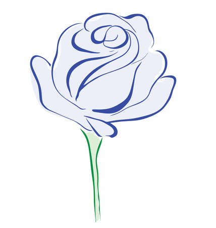 Blue rose flower isolated on white background Stock Vector - 9693969